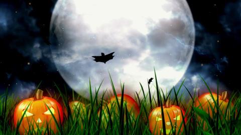 Halloween Night 5 Animation