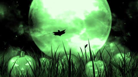 Halloween Night 6 Animation