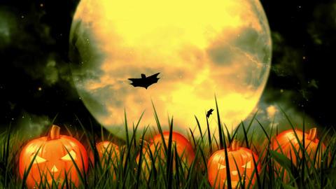 Halloween Night 8 Animation