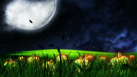 Halloween Night 1 Animation