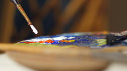 Shallow DOF: Paint brush dips into the white paint on color palette Footage