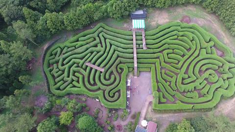 Maze of Jeju 영상물