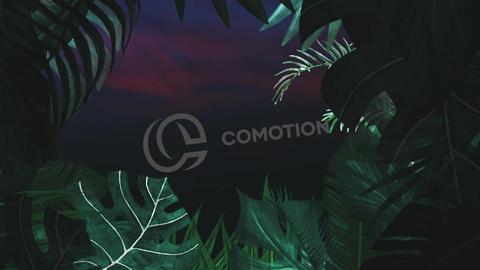 Night Tropical Logo - 3