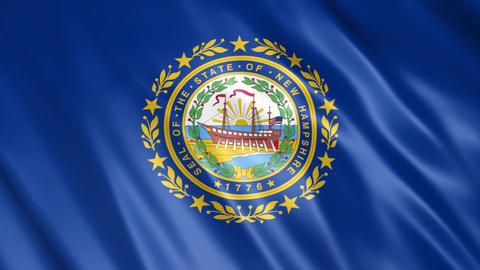 New Hampshire State Flag Videos animados