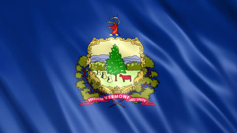 Vermont State Flag Animation