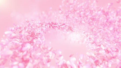 Pink Rose Petals flowing background in 4K Animation
