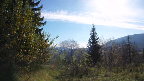Beautiful mountain panorama from behind the trees, breathtaking green hills and blue sky Acción en vivo