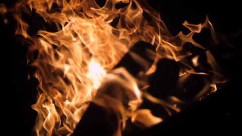 Close up of campfire at night, burning flames ライブ動画