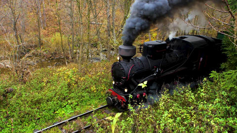 Old vintage train moving through the forest Live Action