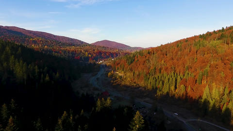 Drone shot over forest road in the Beskid mountains Live Action