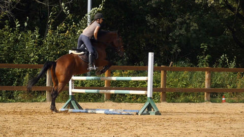 horse jump over the barrier Live Action