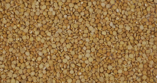 Rotation, background from dry peas grains. Grocery background. Top view. Copy Live Action