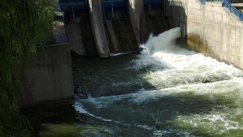 Little Dam In The City, Water Flowing, Foam, River Flowing, Tilt Footage