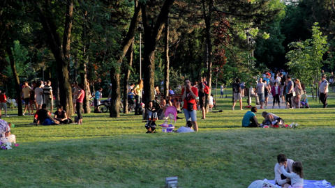 Crowded Park On A Summer Afternoon, Heat Wave, Family Time, People Having Fun Live Action