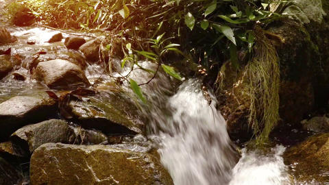 Natural Waterfall over Boulders in Slow Motion. FullHD video Footage