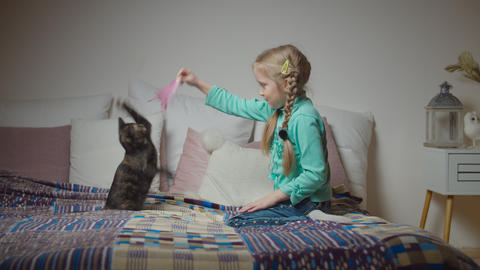 Caring little girl petting and playing with cat on bed Live Action