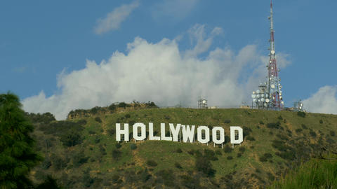 Close up Famous landmark Hollywood Sign in Los Angeles, California thru green Live Action