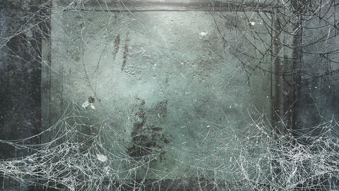 Mystical horror background with dark spiderweb and motion camera Animation