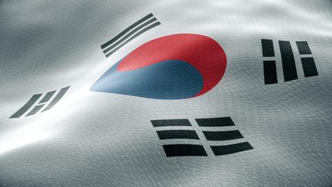 Closeup of a waving south korean flag looping Animation