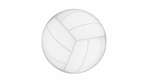 3D model of volleyball ball Animation