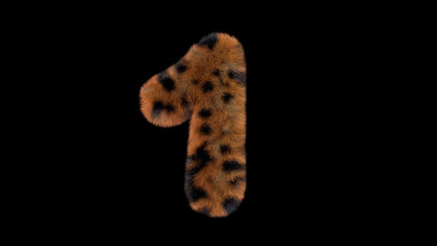 3D animated furry hairy zoo leopard text typeface with alpha channel 1 Animation