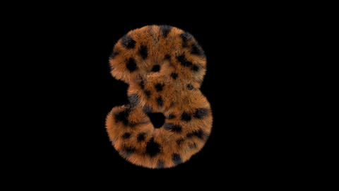 3D animated furry hairy zoo leopard text typeface with alpha channel 3 Animation