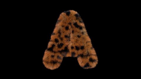 3D animated furry hairy zoo leopard text typeface with alpha channel A Animation