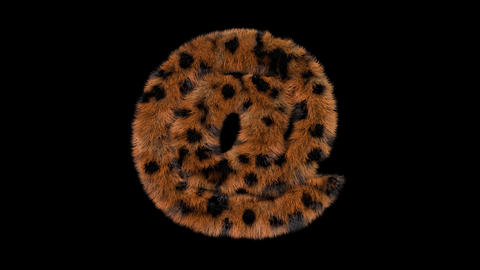 3D animated furry hairy zoo leopard text typeface with alpha channel AT Animation