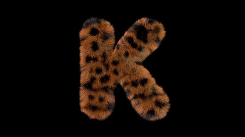 3D animated furry hairy zoo leopard text typeface with alpha channel K Animation