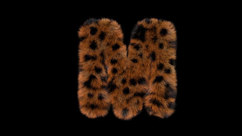 3D animated furry hairy zoo leopard text typeface with alpha channel M Animation