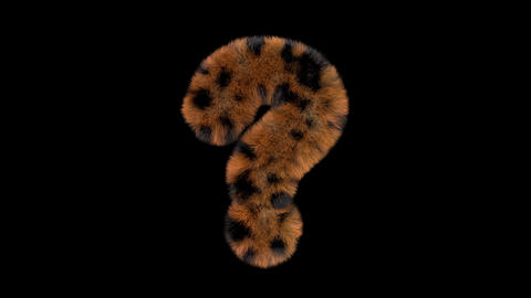 3D animated furry hairy zoo leopard text typeface with alpha channel question Animation