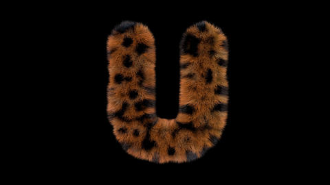 3D animated furry hairy zoo leopard text typeface with alpha channel U Animation