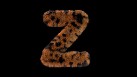 3D animated furry hairy zoo leopard text typeface with alpha channel Z Animation