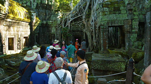 Tourists Take Photos at Ta Prohm. a temple at Angkor in Cambodia Footage