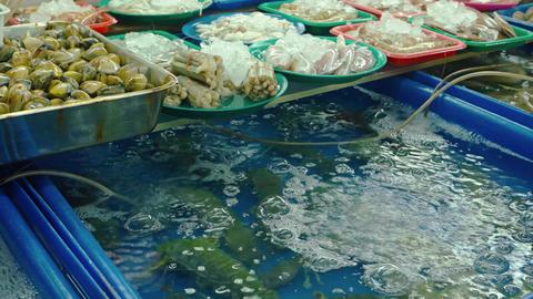 Assorted Fresh Seafood in a Thai Public Market. UltraHD video Footage