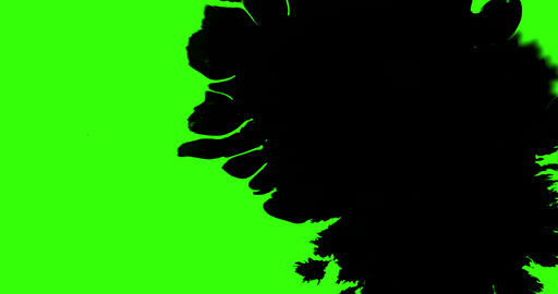 multi abstract splash ink paint brush stroke black transition on chroma key green screen background, Live Action