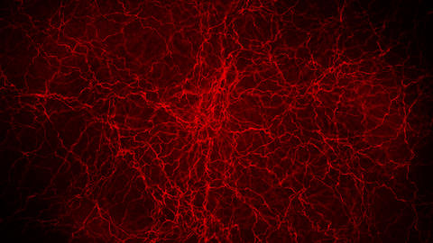 3D loop animation of human blood vessel. Red capillaries. Eye blood on black background. Anatomical Animation