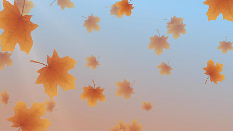 Fall Leaves Animated Backdrop with 4 transitions Animation