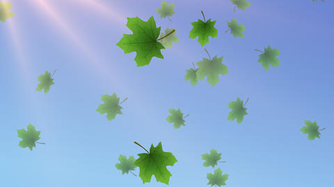 Spring Leaves Animated Backdrop with 4 transitions Animation