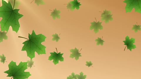 Summer Leaves Animated Backdrop with 4 transitions Animation