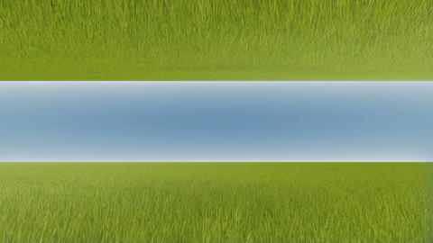 Green backdrop. Rural landscape. Green grass lawn. Rural scene. Farmland scene Live Action