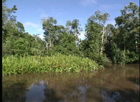 A point-of-view shot traveling along a muddy river in a... Stock Video Footage