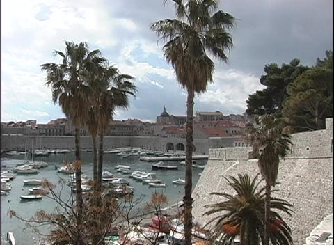 Pan-right across the bay in Dubrovnik, Croatia with palm trees in the foreground Footage