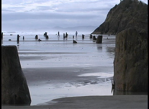 People run along the shore during low tide at Seal Rock in Oregon Footage