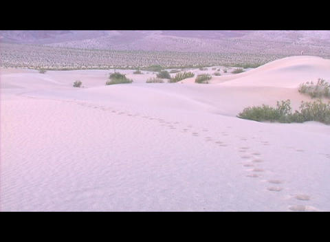 Tracks lead through deep snow in a wintry landscape Footage