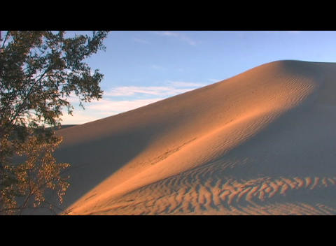 Golden light shines on a beautiful sand dune Footage