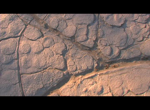 Cracks and crevices form patterns in a dry section of land Stock Video Footage