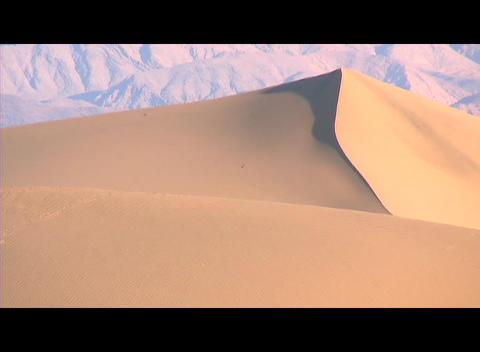 Rugged mountains rise behind a golden sand dune shaped smooth by the wind Footage