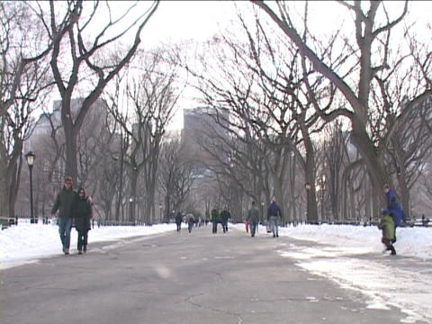New Yorkers visit Central Park on a winter day Stock Video Footage