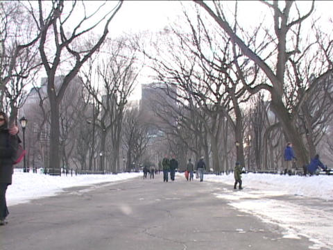 New Yorkers visit Central Park on a winter day Footage